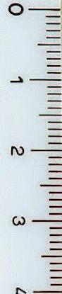 trama-tessuto2
